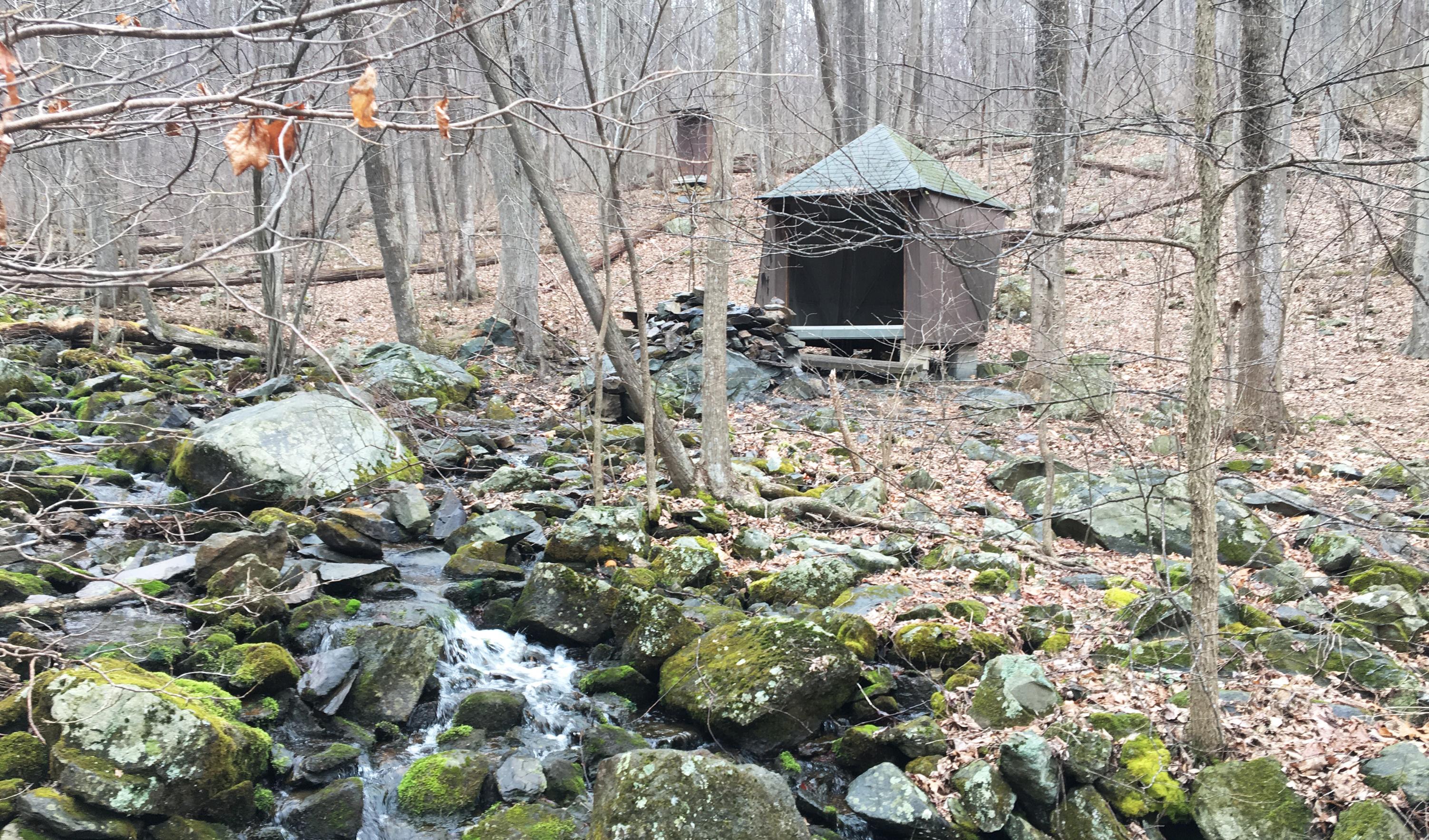 le premier shelter