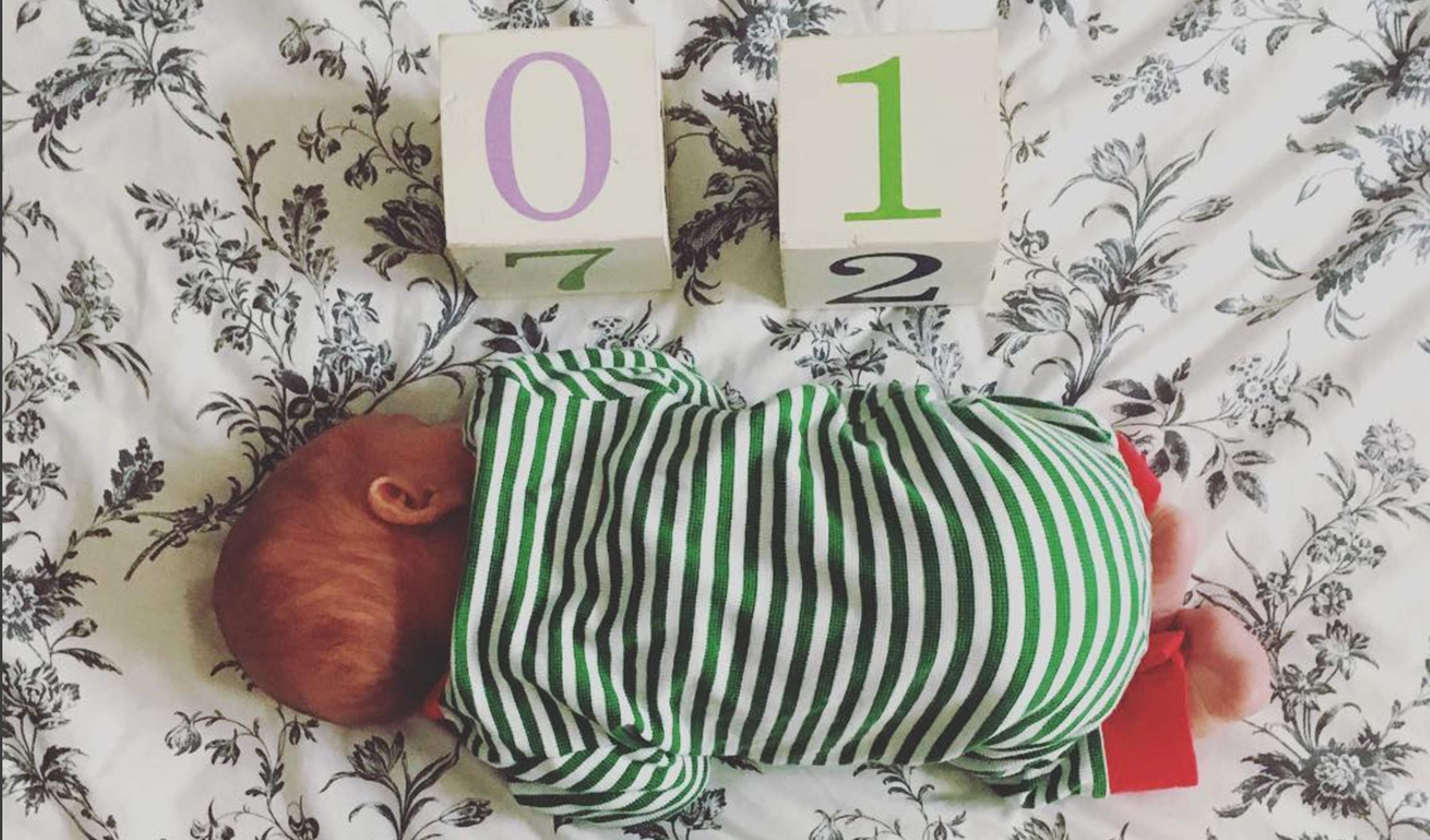 Mini Léon à 1 mois